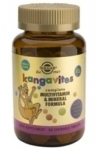 SOLGAR400/UK_Kangavites_Multivitamin_Mineral_Chewable_Tablets_Bouncin_Berry_Flavour_1015_PIC